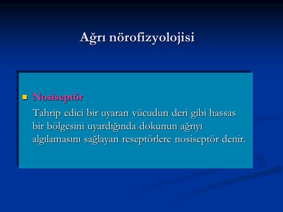 Ağrı nörofizyolojisi Nosiseptör Nosiseptör Tahrip edici bir uyaran vücudun deri gibi hassas bir bölgesini uyardığında dokunun ağrıyı algılamasını sağlayan reseptörlere nosiseptör denir.