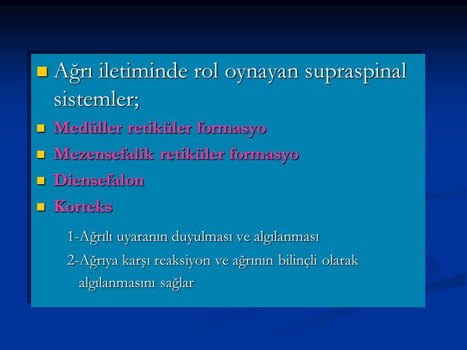 Ağrı iletiminde rol oynayan supraspinal sistemler; Ağrı iletiminde rol oynayan supraspinal sistemler; Medüller retiküler formasyo Medüller retiküler formasyo Mezensefalik retiküler formasyo Mezensefalik retiküler formasyo Diensefalon Diensefalon Korteks Korteks 1-Ağrılı uyaranın duyulması ve algılanması 1-Ağrılı uyaranın duyulması ve algılanması 2-Ağrıya karşı reaksiyon ve ağrının bilinçli olarak 2-Ağrıya karşı reaksiyon ve ağrının bilinçli olarak algılanmasını sağlar algılanmasını sağlar Ağrı iletiminde rol oynayan supraspinal sistemler; Ağrı iletiminde rol oynayan supraspinal sistemler; Medüller retiküler formasyo Medüller retiküler formasyo Mezensefalik retiküler formasyo Mezensefalik retiküler formasyo Diensefalon Diensefalon Korteks Korteks 1-Ağrılı uyaranın duyulması ve algılanması 1-Ağrılı uyaranın duyulması ve algılanması 2-Ağrıya karşı reaksiyon ve ağrının bilinçli olarak 2-Ağrıya karşı reaksiyon ve ağrının bilinçli olarak algılanmasını sağlar algılanmasını sağlar