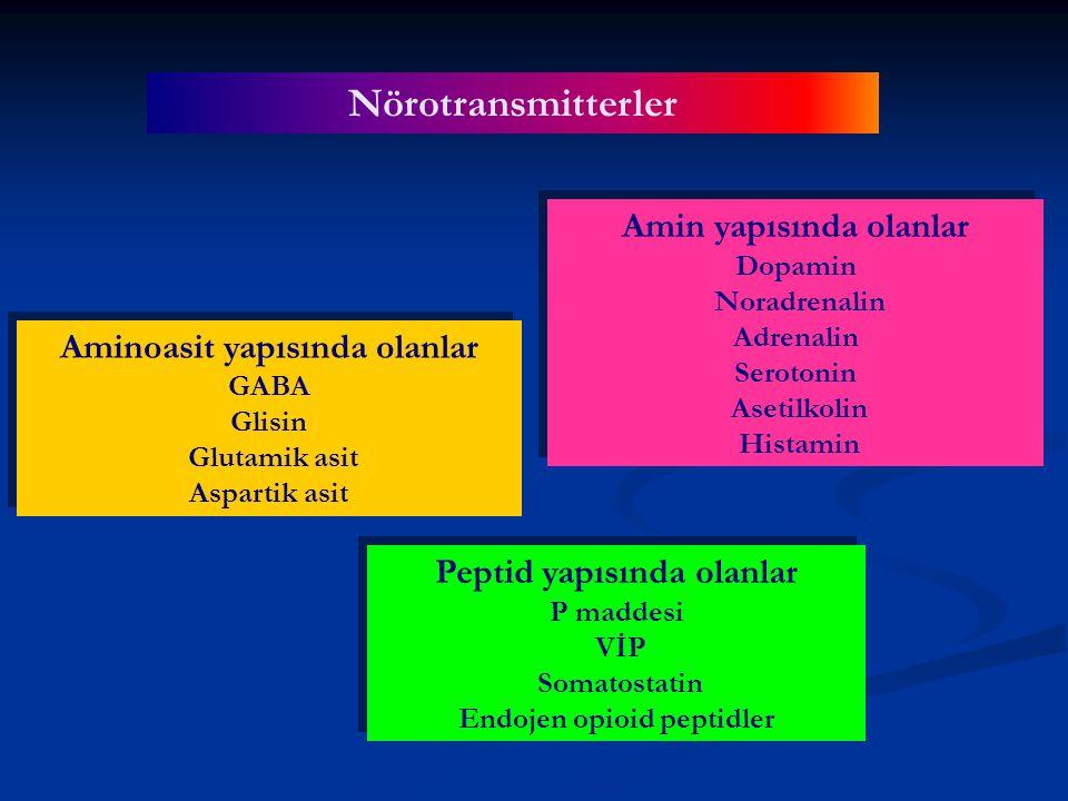 Nörotransmitterler Aminoasit yapısında olanlar GABA Glisin Glutamik asit Aspartik asit Aminoasit yapısında olanlar GABA Glisin Glutamik asit Aspartik asit Amin yapısında olanlar Dopamin Noradrenalin Adrenalin Serotonin Asetilkolin Histamin Amin yapısında olanlar Dopamin Noradrenalin Adrenalin Serotonin Asetilkolin Histamin Peptid yapısında olanlar P maddesi VİP Somatostatin Endojen opioid peptidler Peptid yapısında olanlar P maddesi VİP Somatostatin Endojen opioid peptidler