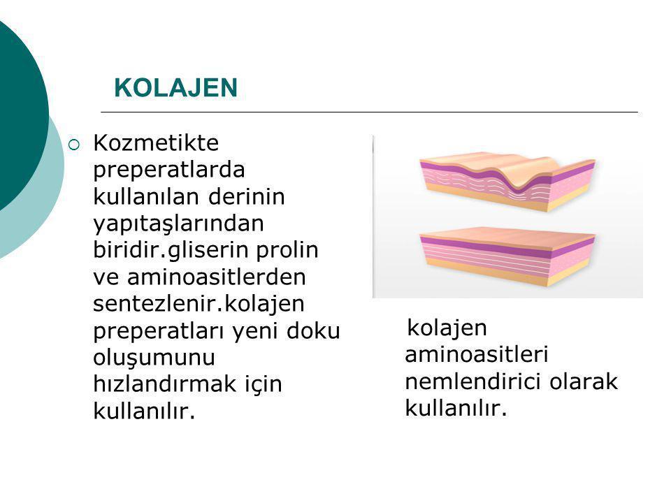 KOLAJEN  Kozmetikte preperatlarda kullanılan derinin yapıtaşlarından biridir.gliserin prolin ve aminoasitlerden sentezlenir.kolajen preperatları yeni