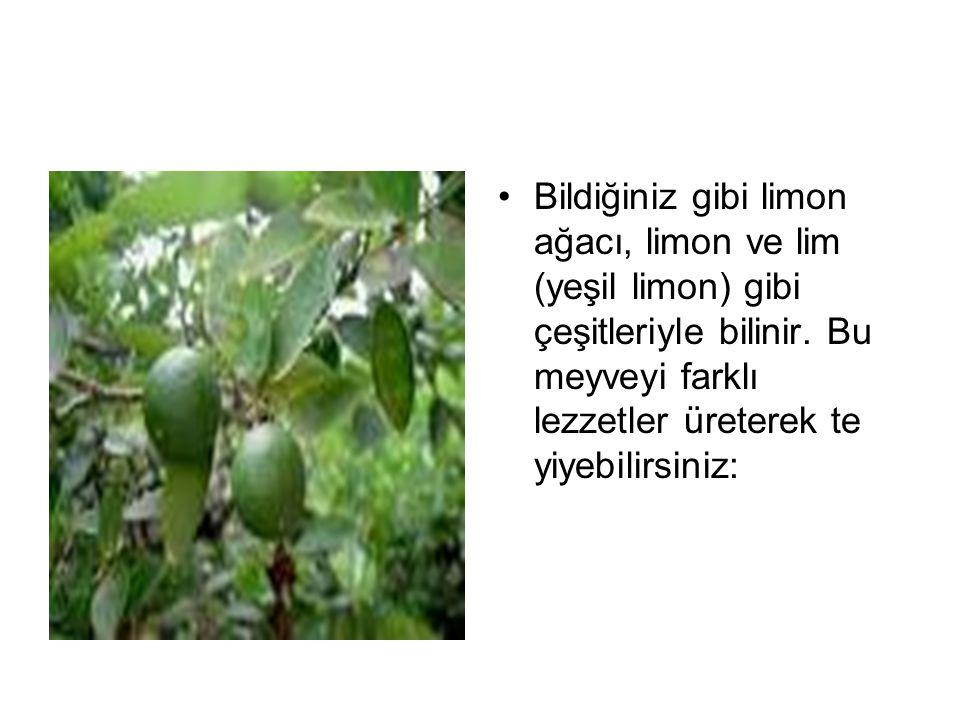 Bildiğiniz gibi limon ağacı, limon ve lim (yeşil limon) gibi çeşitleriyle bilinir. Bu meyveyi farklı lezzetler üreterek te yiyebilirsiniz: