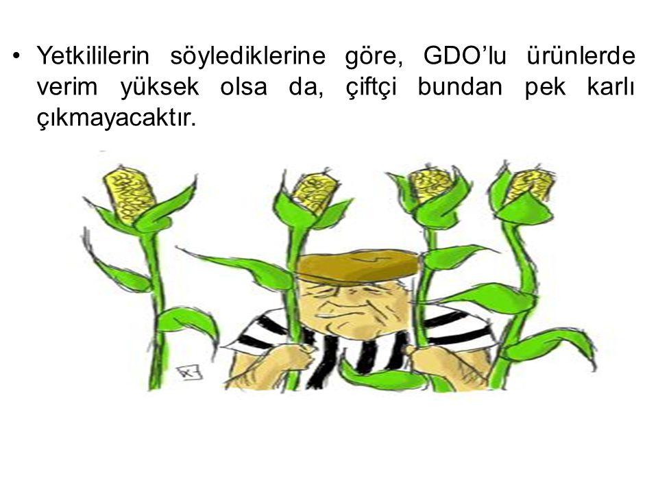 Yetkililerin söylediklerine göre, GDO'lu ürünlerde verim yüksek olsa da, çiftçi bundan pek karlı çıkmayacaktır.