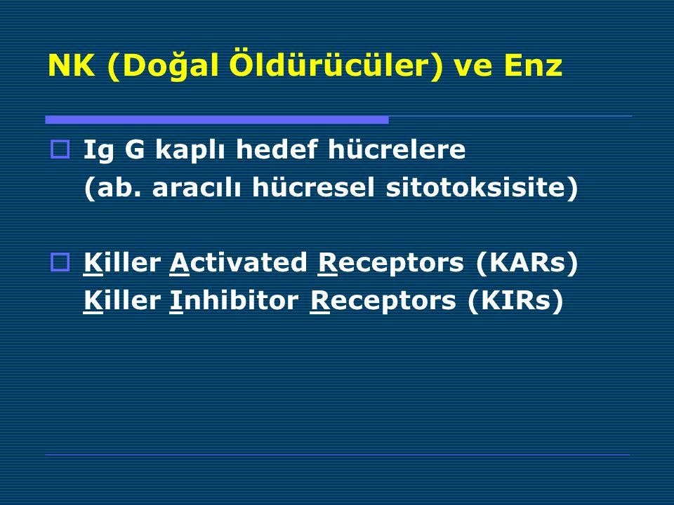 NK (Doğal Öldürücüler) ve Enz  Ig G kaplı hedef hücrelere (ab.