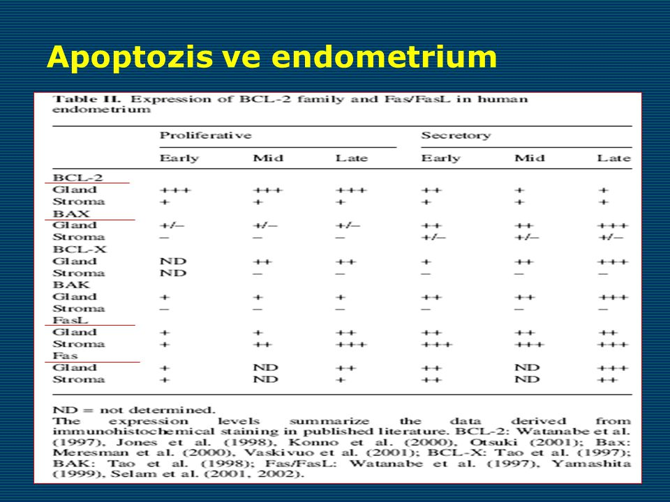 Apoptozis ve endometrium