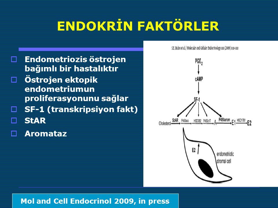 ENDOKRİN FAKTÖRLER  Endometriozis östrojen bağımlı bir hastalıktır  Östrojen ektopik endometriumun proliferasyonunu sağlar  SF-1 (transkripsiyon fakt)  StAR  Aromataz Mol and Cell Endocrinol 2009, in press