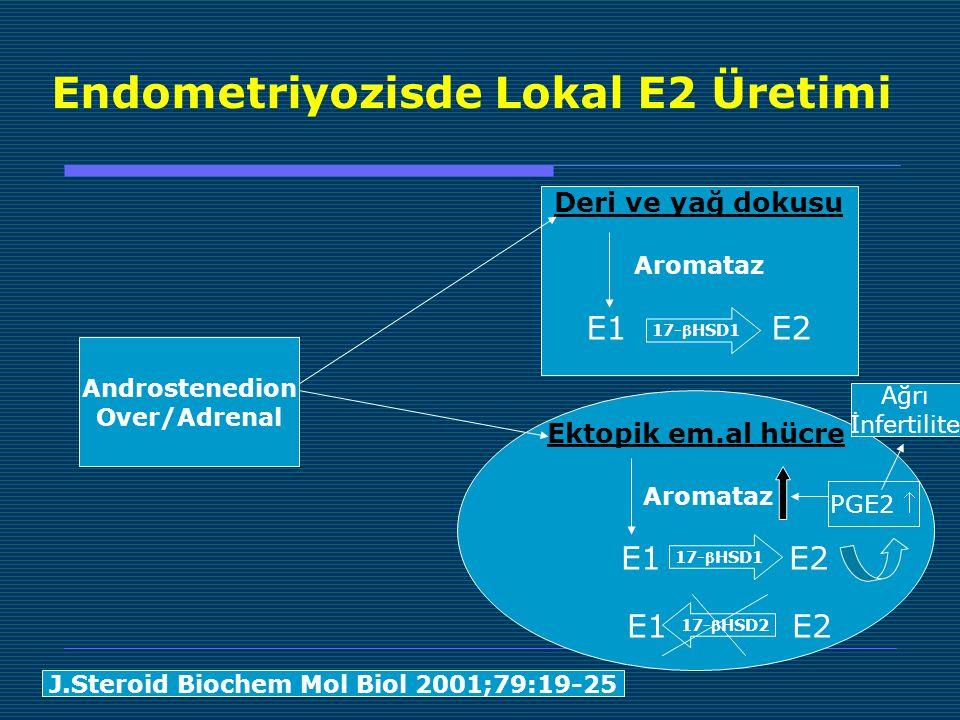 Endometriyozisde Lokal E2 Üretimi Androstenedion Over/Adrenal Deri ve yağ dokusu Aromataz E1 E2 17-HSD1 Ektopik em.al hücre Aromataz E1 E2 17-HSD1 17-HSD2 PGE2  J.Steroid Biochem Mol Biol 2001;79:19-25 Ağrı İnfertilite
