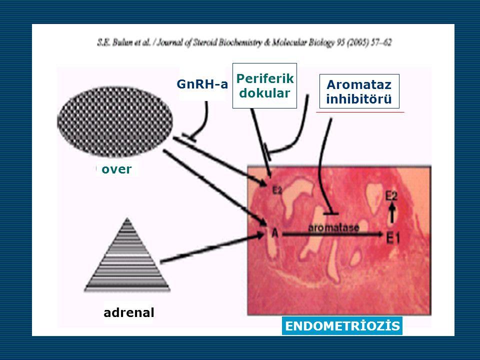 adrenal over ENDOMETRİOZİS Periferik dokular Aromataz inhibitörü GnRH-a