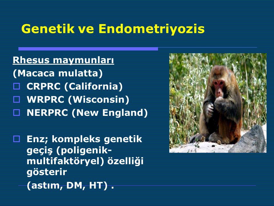Rhesus maymunları (Macaca mulatta)  CRPRC (California)  WRPRC (Wisconsin)  NERPRC (New England)  Enz; kompleks genetik geçiş (poligenik- multifaktöryel) özelliği gösterir (astım, DM, HT).