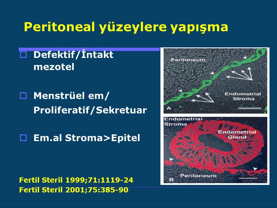 Peritoneal yüzeylere yapışma  Defektif/İntakt mezotel  Menstrüel em/ Proliferatif/Sekretuar  Em.al Stroma>Epitel Fertil Steril 1999;71:1119-24 Fertil Steril 2001;75:385-90
