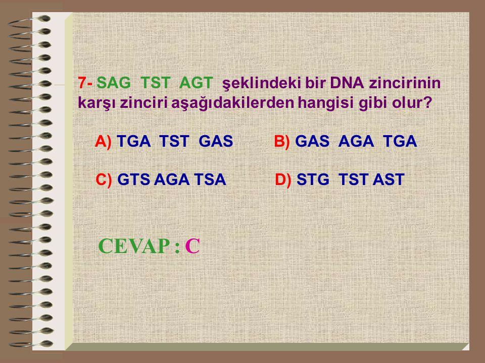 7- SAG TST AGT şeklindeki bir DNA zincirinin karşı zinciri aşağıdakilerden hangisi gibi olur? A) TGA TST GAS B) GAS AGA TGA C) GTS AGA TSA D) STG TST