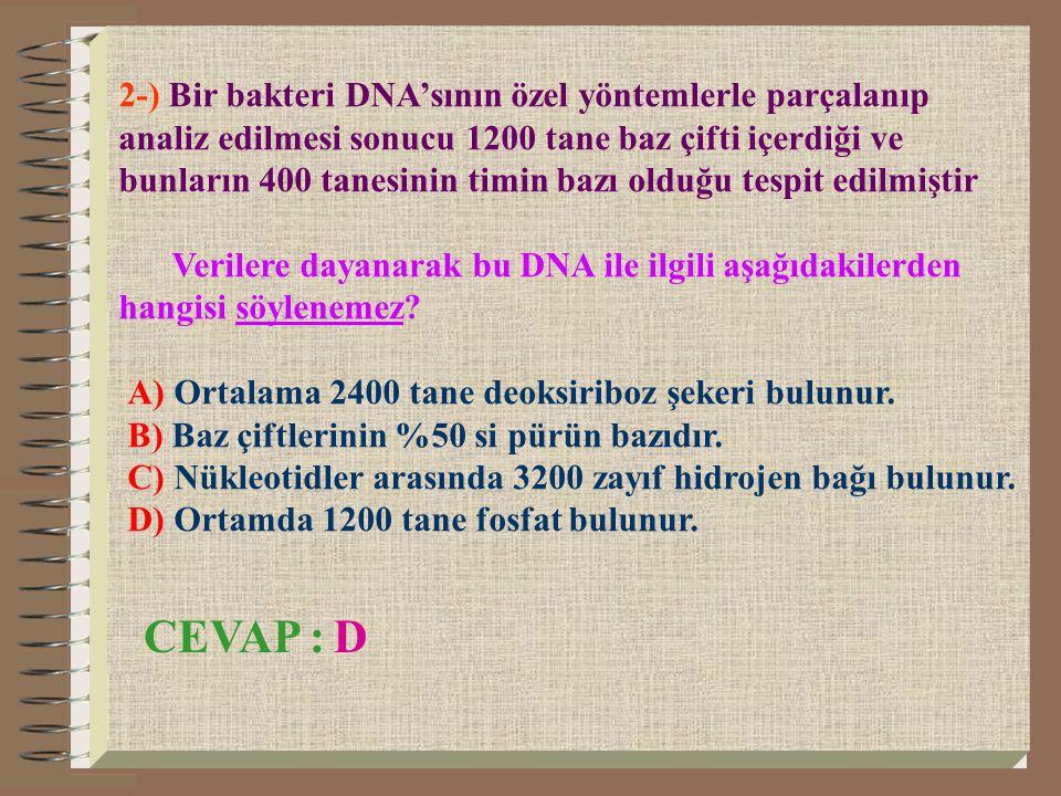 2-) Bir bakteri DNA'sının özel yöntemlerle parçalanıp analiz edilmesi sonucu 1200 tane baz çifti içerdiği ve bunların 400 tanesinin timin bazı olduğu