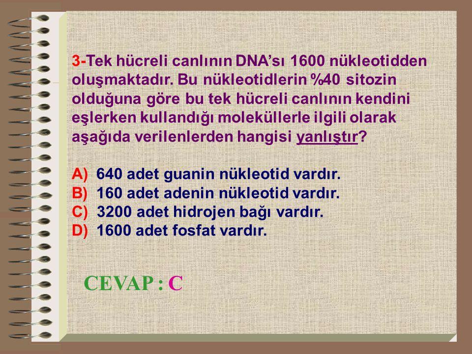 4- 500 er adet timin ve sitozin nükleotid bulunduran bir DNA zincirindeki adenin sayısı toplam nükleotid sayısının % kaçıdır.