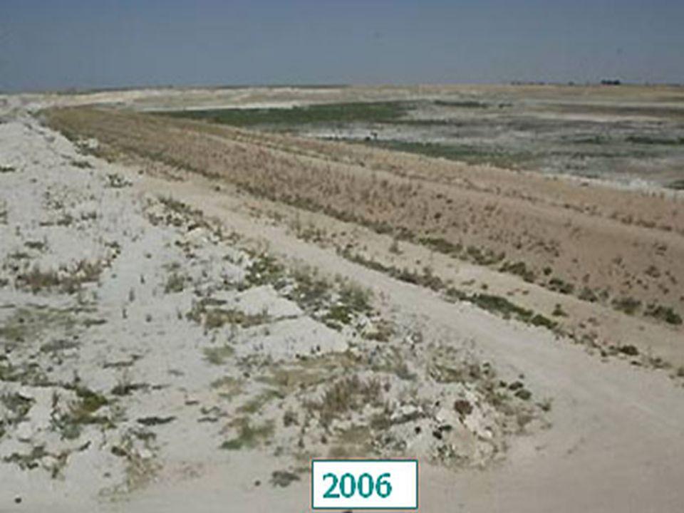 Çevre ve Orman Bakanlığı'nın isteğiyle, Türkiye için iklim değişikliği senaryoları başlıklı bir rapor hazırladıklarını söyleyen Dalfes, şu ana kadar elde edilen verilerin, 2070 -2100 yılları arasını kapsadığını açıkladı.