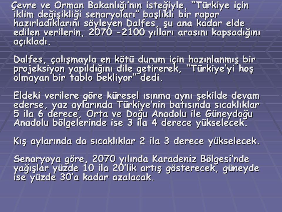 """Çevre ve Orman Bakanlığı'nın isteğiyle, """"Türkiye için iklim değişikliği senaryoları"""" başlıklı bir rapor hazırladıklarını söyleyen Dalfes, şu ana kadar"""
