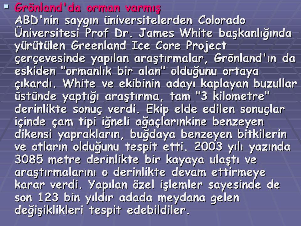  Grönland'da  Grönland'da orman varmış ABD'nin saygın üniversitelerden Colorado Üniversitesi Prof Dr. James White başkanlığında yürütülen Greenland