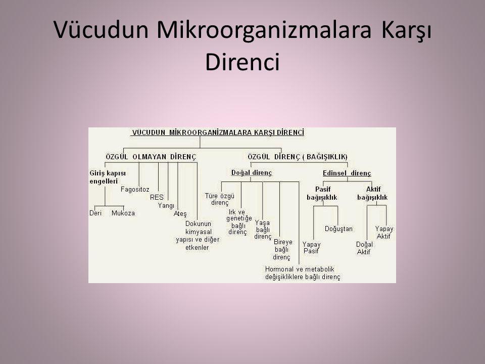 Vücudun Mikroorganizmalara Karşı Direnci