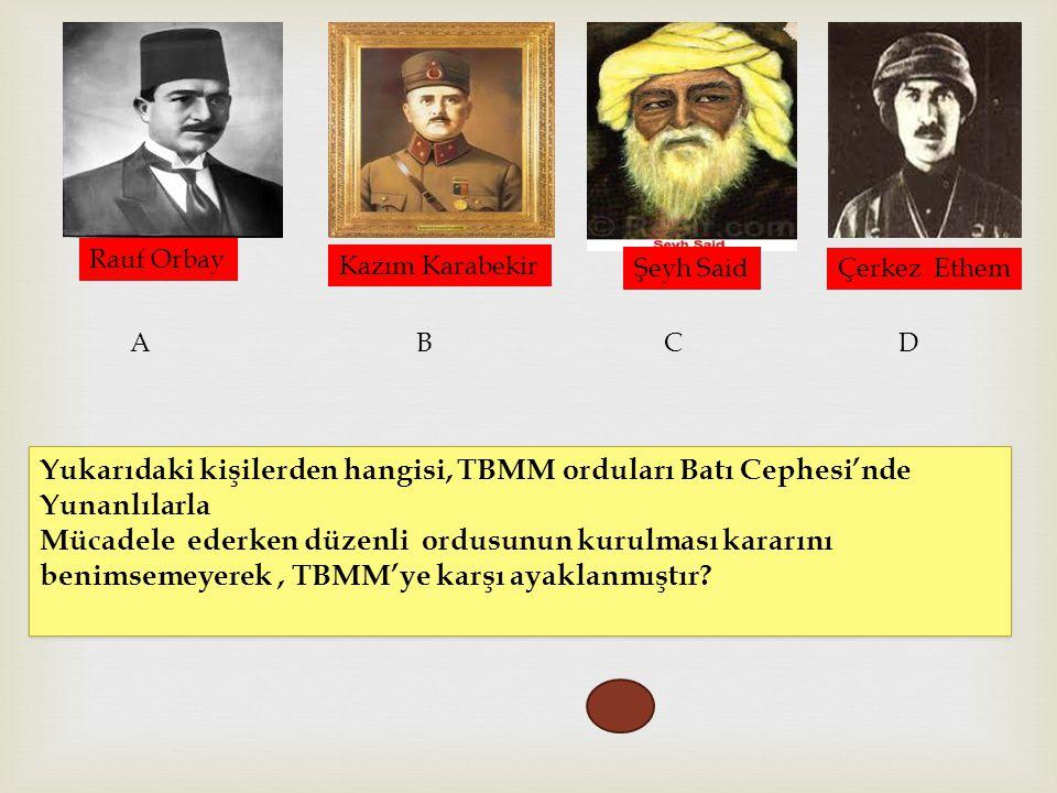 Rauf Orbay Kazım Karabekir Şeyh Said Çerkez Ethem ABC D Yukarıdaki kişilerden hangisi, TBMM orduları Batı Cephesi'nde Yunanlılarla Mücadele ederken dü