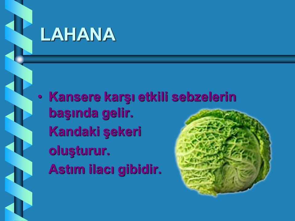 LAHANA Kansere karşı etkili sebzelerin başında gelir.Kansere karşı etkili sebzelerin başında gelir. Kandaki şekeri oluşturur. Astım ilacı gibidir.