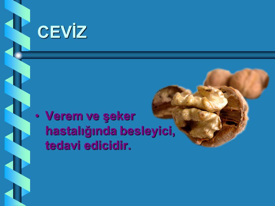 CEVİZ Verem ve şeker hastalığında besleyici, tedavi edicidir.Verem ve şeker hastalığında besleyici, tedavi edicidir.