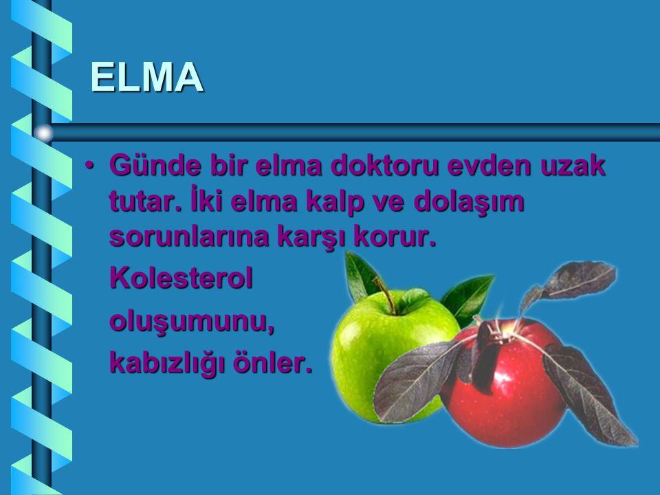 ELMA Günde bir elma doktoru evden uzak tutar. İki elma kalp ve dolaşım sorunlarına karşı korur.Günde bir elma doktoru evden uzak tutar. İki elma kalp