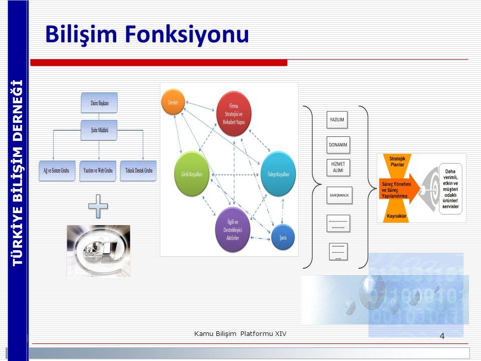 TÜRKİYE BİLİŞİM DERNEĞİ Kamu Bilişim Platformu XIV 4 Bilişim Fonksiyonu