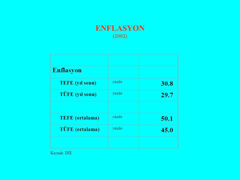 ENFLASYON (2002) Enflasyon TEFE (yıl sonu) yüzde 30.8 TÜFE (yıl sonu) yüzde 29.7 TEFE (ortalama) yüzde 50.1 TÜFE (ortalama) yüzde 45.0 Kaynak: DİE