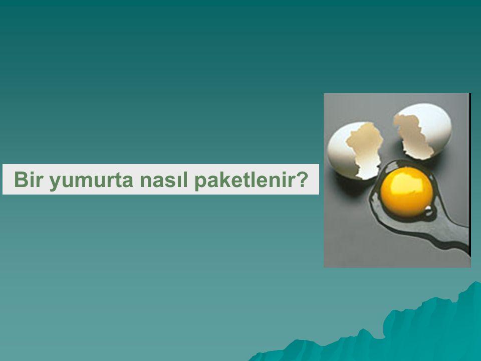 Bir yumurta nasıl paketlenir