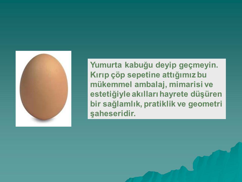 Yumurta kabuğu deyip geçmeyin.