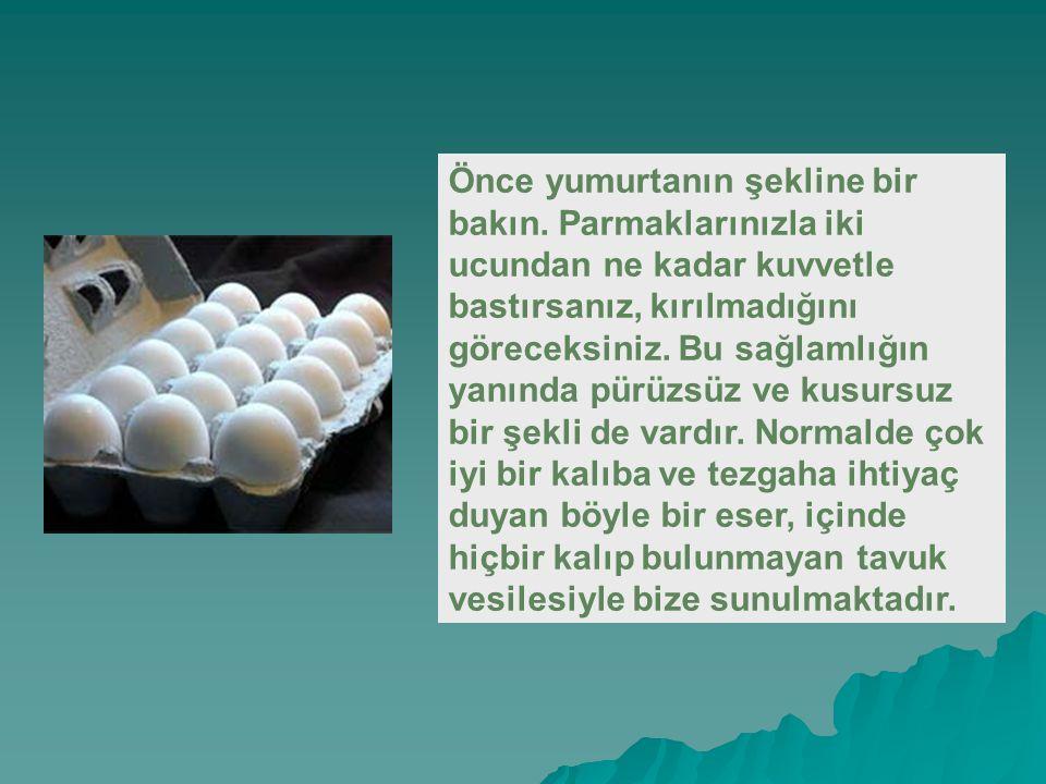 Önce yumurtanın şekline bir bakın.