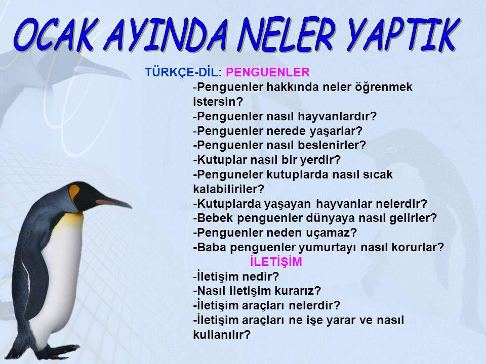 TÜRKÇE-DİL: PENGUENLER -Penguenler hakkında neler öğrenmek istersin? -Penguenler nasıl hayvanlardır? -Penguenler nerede yaşarlar? -Penguenler nasıl be