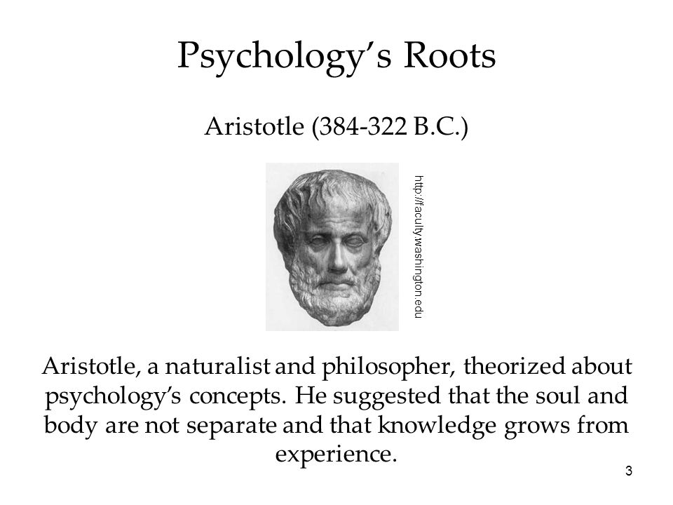 3 Psychology's Roots Aristotle (384-322 B.C.) Aristotle, a naturalist and philosopher, theorized about psychology's concepts. He suggested that the so