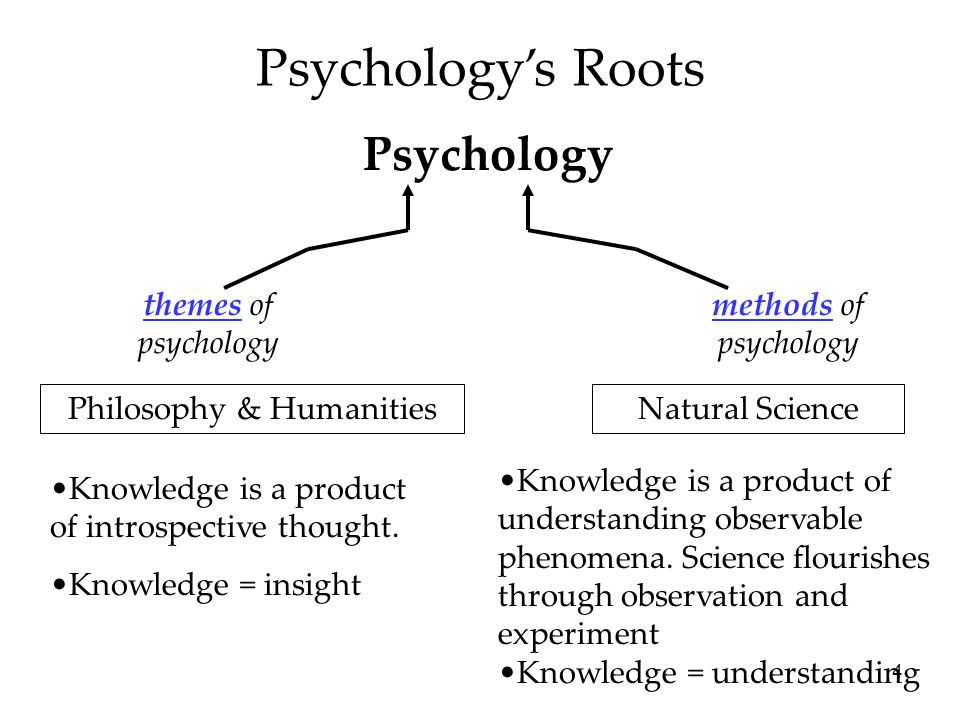 15 Psychology's Current Perspectives PerspectiveFocusSample Questions PsychodynamicHow behavior springs from unconscious drives and conflicts.