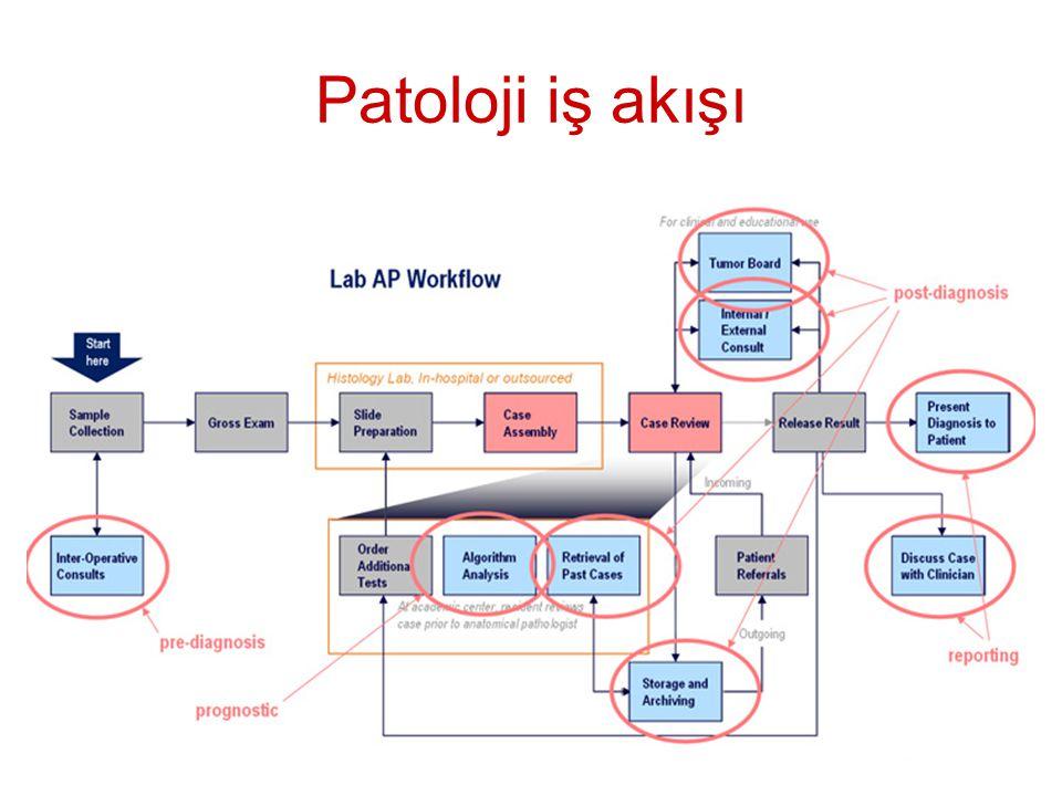 Patoloji iş akışı