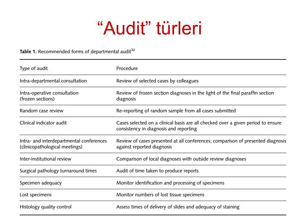 """""""Audit"""" türleri"""