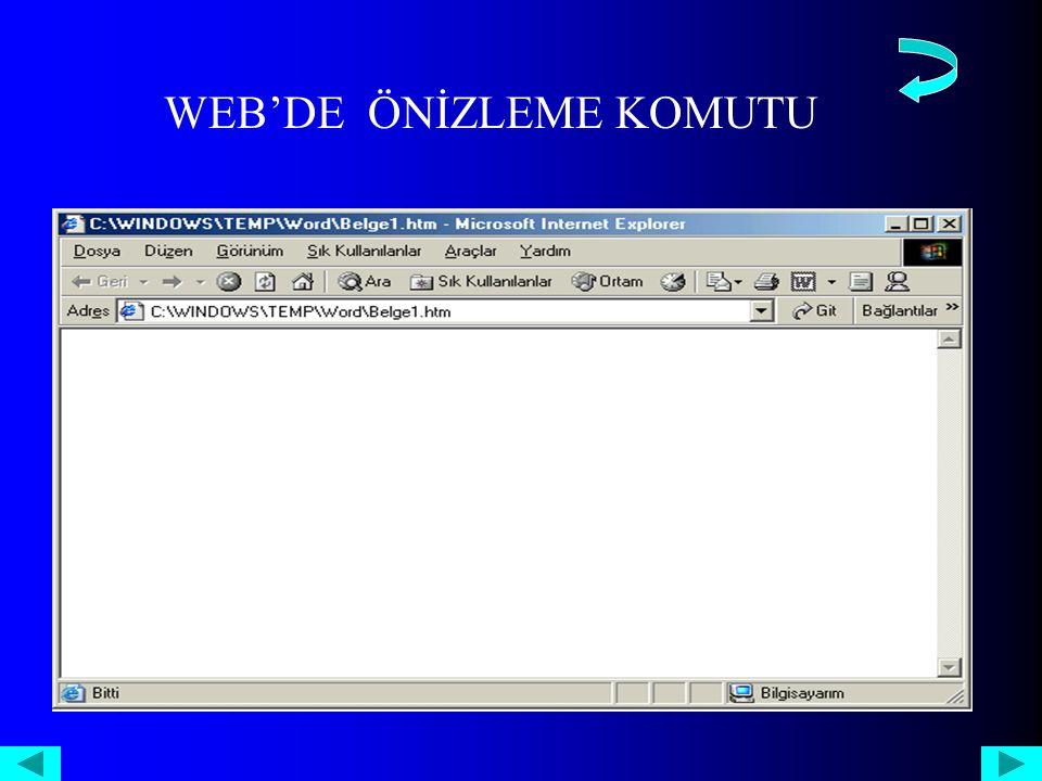 WEB'DE ÖNİZLEME KOMUTU