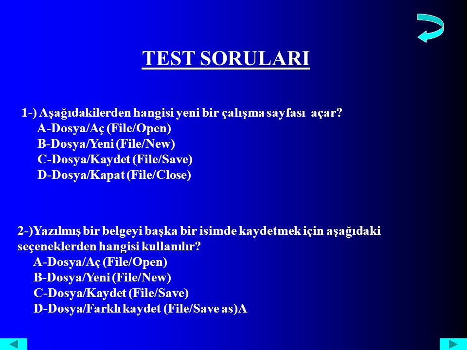 TEST SORULARI 1-) Aşağıdakilerden hangisi yeni bir çalışma sayfası açar.