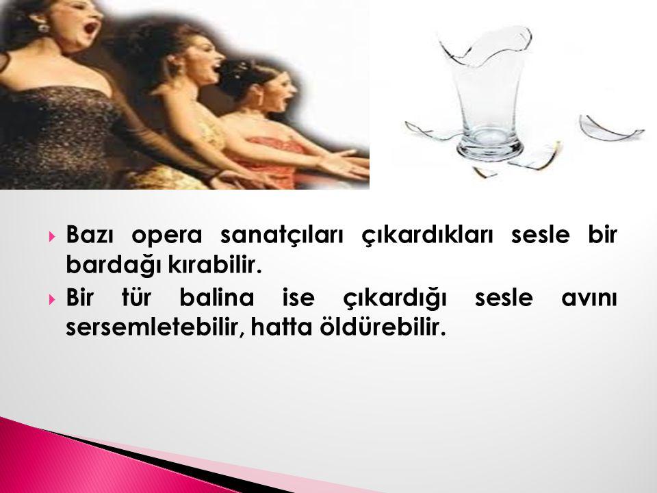  Bazı opera sanatçıları çıkardıkları sesle bir bardağı kırabilir.