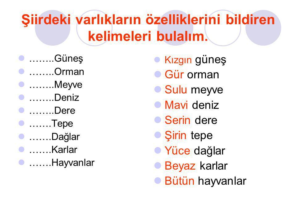 Mehmet YÜCEDAĞ 2/E Sınıfı Öğretmeni