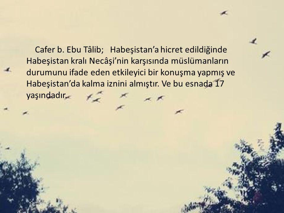 Cafer b.