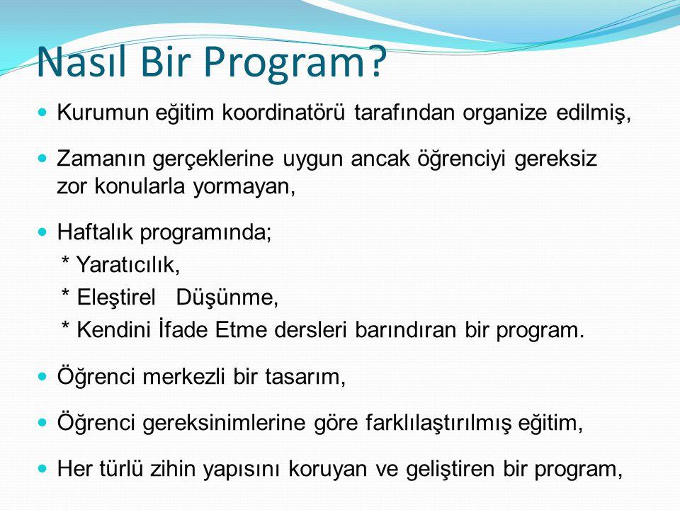 Nasıl Bir Program.