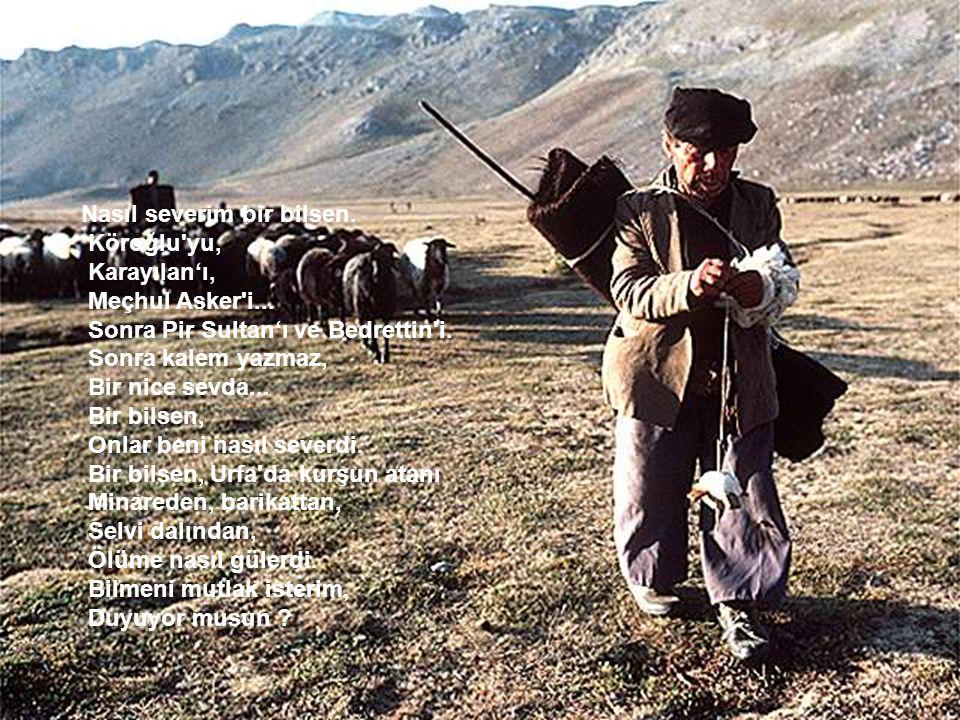 Nasıl severim bir bilsen. Köroğlu'yu, Karayılan'ı, Meçhul Asker'i... Sonra Pir Sultan'ı ve Bedrettin'i. Sonra kalem yazmaz, Bir nice sevda... Bir bils