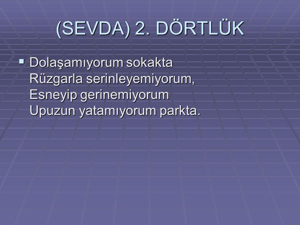 (SEVDA) 2.