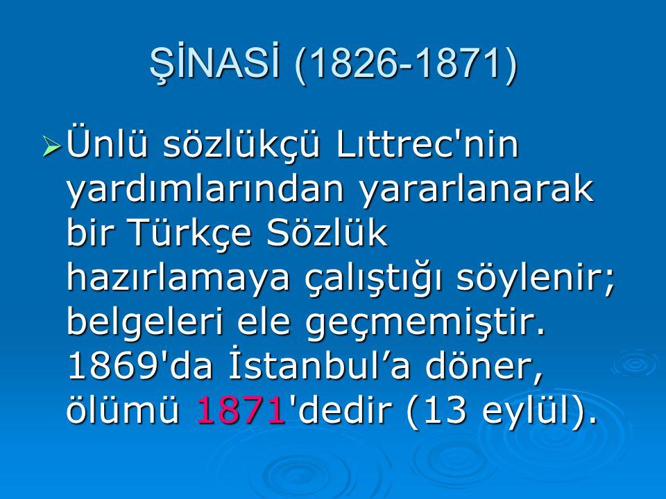 ÜÜÜÜnlü sözlükçü Lıttrec'nin yardımlarından yararlanarak bir Türkçe Sözlük hazırlamaya çalıştığı söylenir; belgeleri ele geçmemiştir. 1869'da İsta