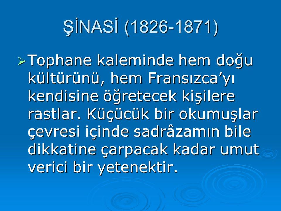 FFFFransa'daki iktisat Maliye öğrenimine 1849 da gönderildiği, 1855 te döndüğü sanılır.
