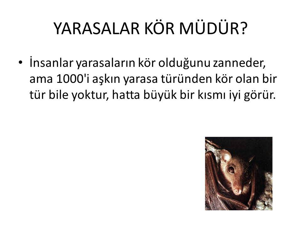 YARASA ALGORİTMASI ε- [-1,1] arası random sayıdır. At bütün yarasaların ortalama gürültüsü