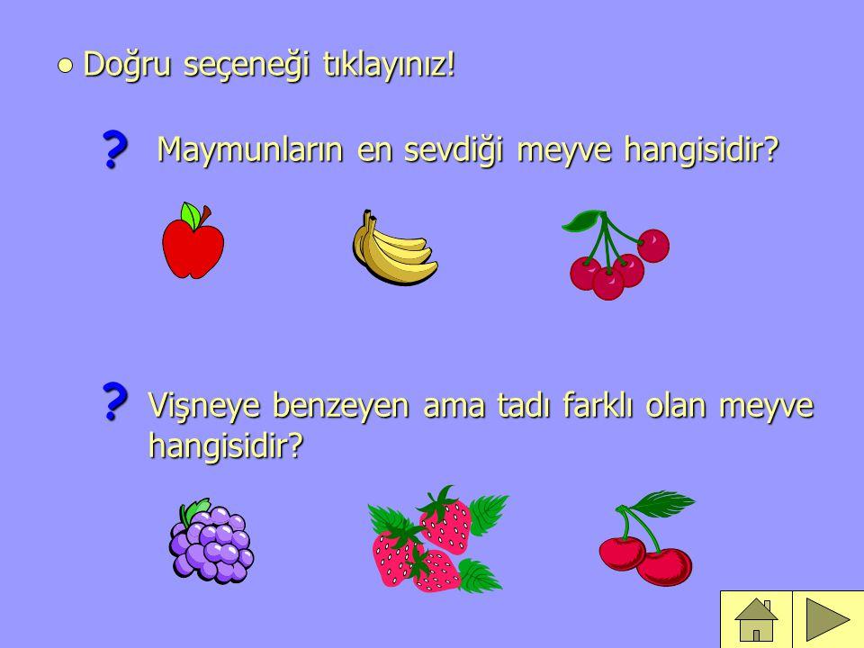 Doğru seçeneği tıklayınız.Maymunların en sevdiği meyve hangisidir.