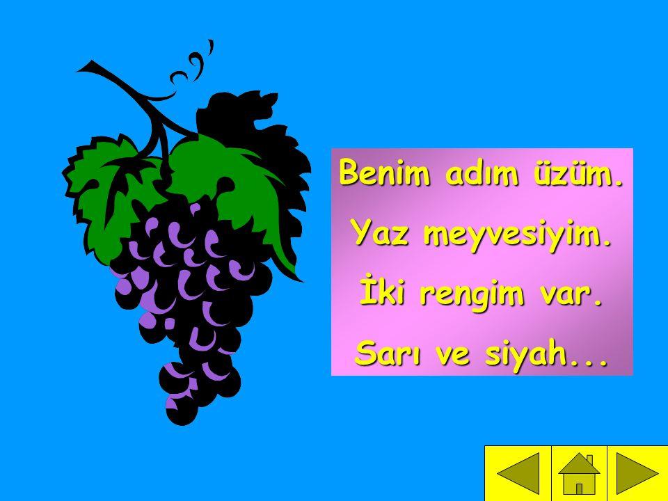 Benim adım üzüm. Yaz meyvesiyim. İki rengim var. Sarı ve siyah...