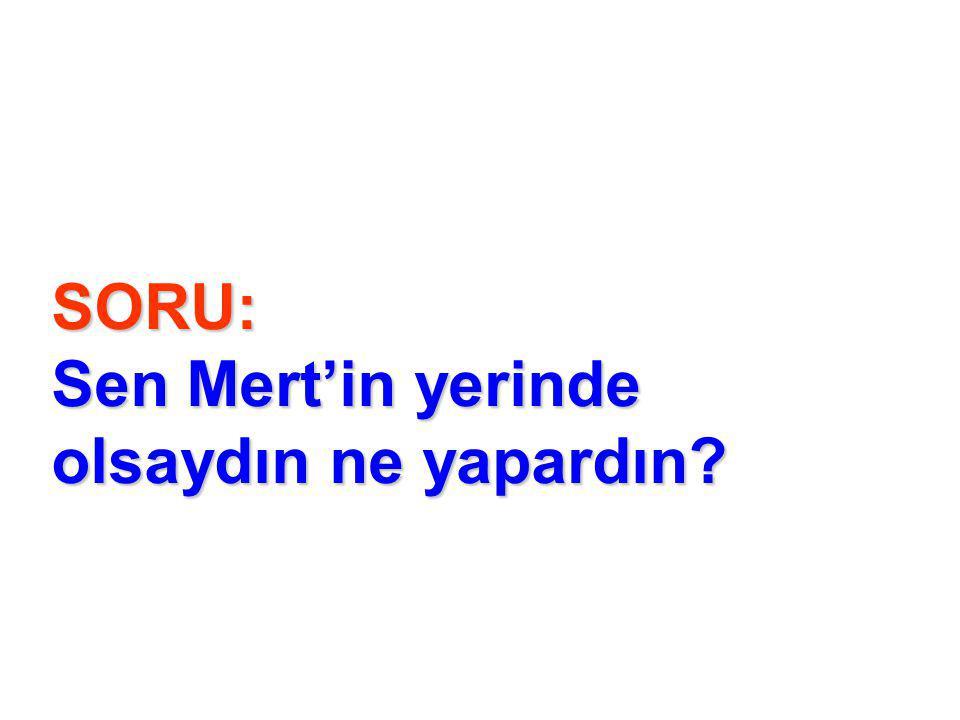 SORU: Sen Mert'in yerinde olsaydın ne yapardın?