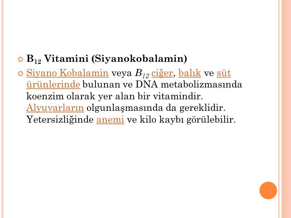 B 5 Vitamini (Pantotenik Asit) birçok gıdada, özellikle de ciğer ve baklagillerde bulunan önemli bir vitamindir. E vitamininin içeriği olan pantotenik