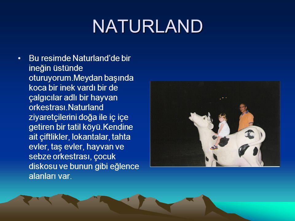 NATURLAND Bu resimde Naturland'de bir ineğin üstünde oturuyorum.Meydan başında koca bir inek vardı bir de çalgıcılar adlı bir hayvan orkestrası.Naturl